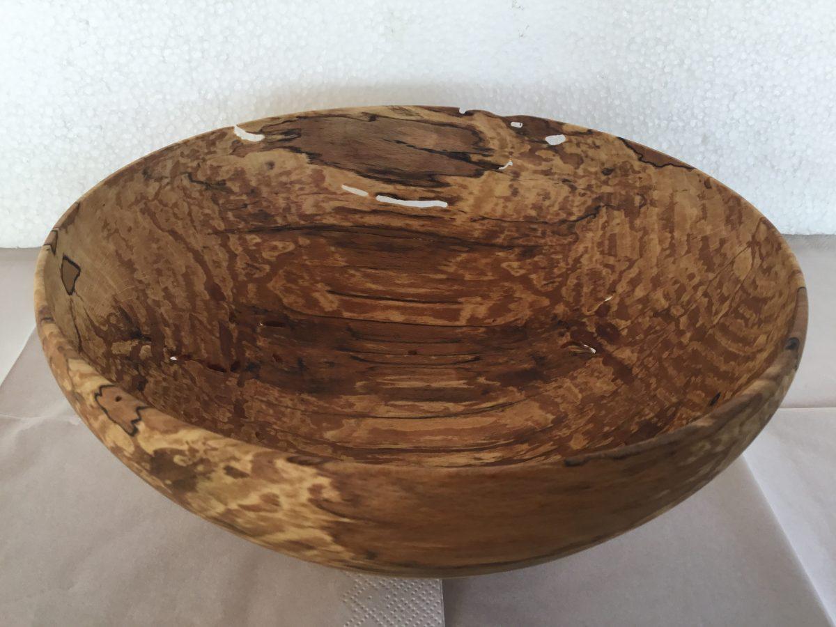 Hullet skål i svampet bøgetræ